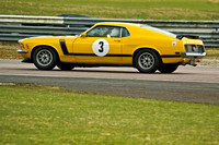 Ford Mustang     Martin Edridge